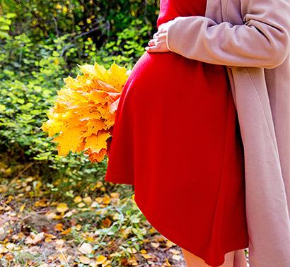 pregnancy-calendar-10-8