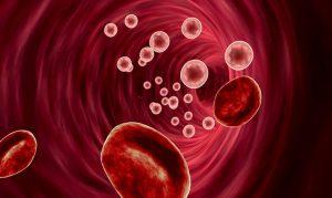 Вируси в кръвта