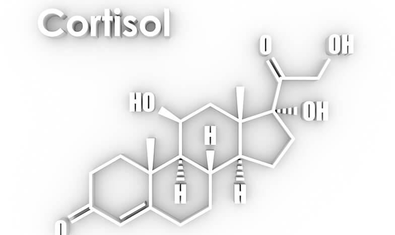 Кортизол, който увеличава симптомите при алергия